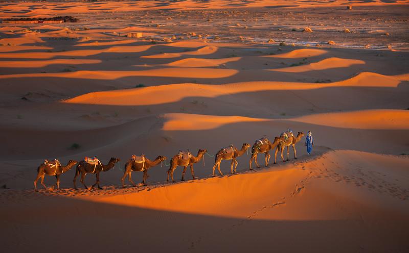 Sahara_0145_O.jpg