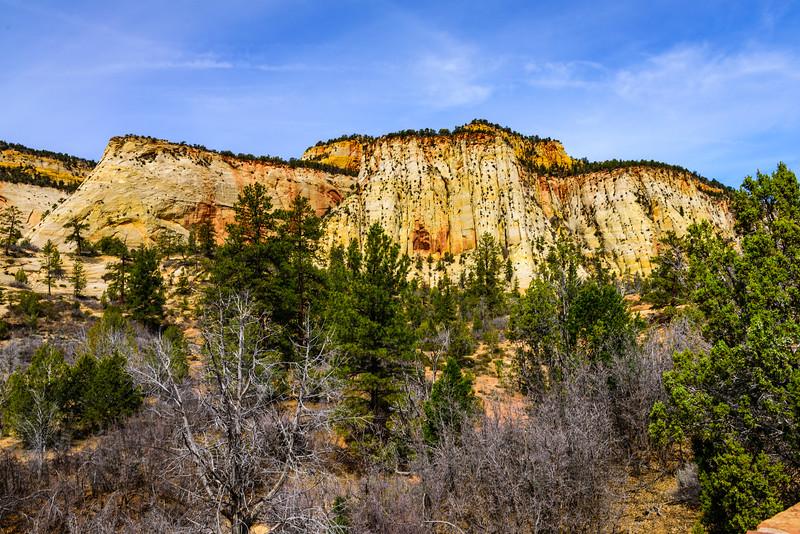 Zion National Park, Southern Utah