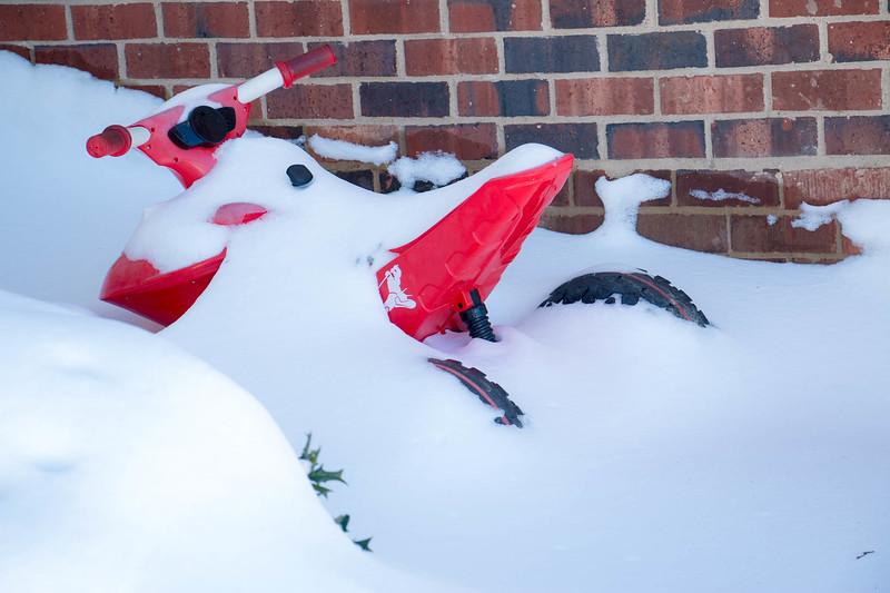 20160124-Snow_20160124_60-33.jpg
