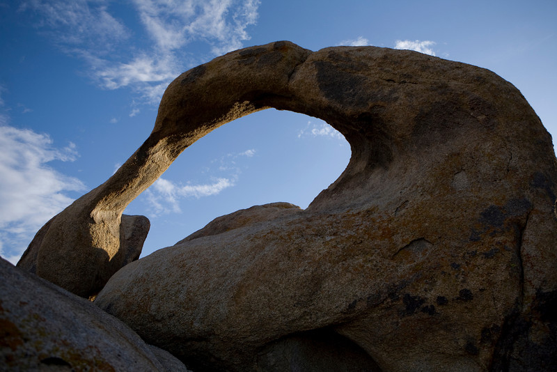 mammoth-6270.jpg