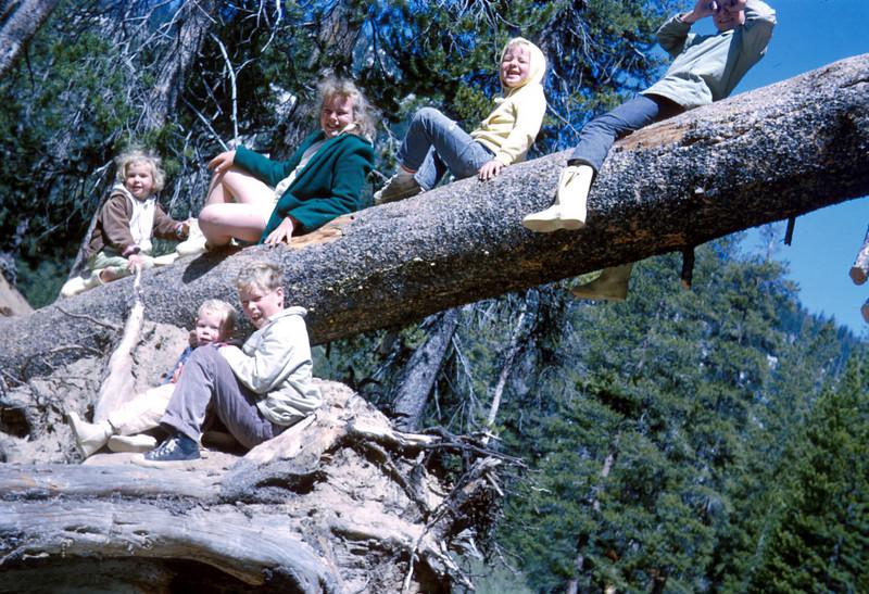 0428 - Kids, (7-65).jpg