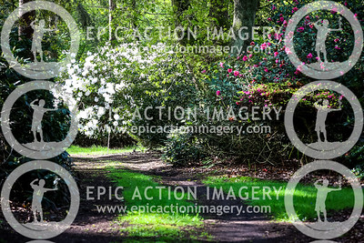 Haughley Park Infinity Run 2021
