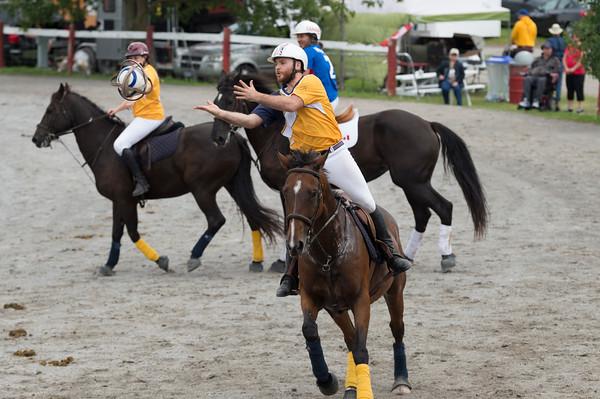 2019 Lansdowne  Horse Festival