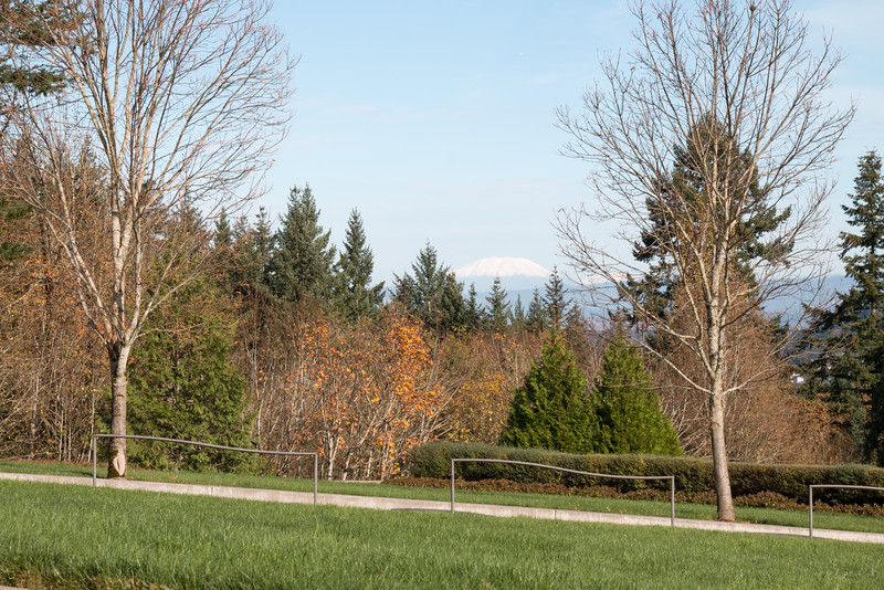 Willamette National Cemetery-5.jpg