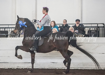 UPHA Chapter 10 Winter Warm-up 2018