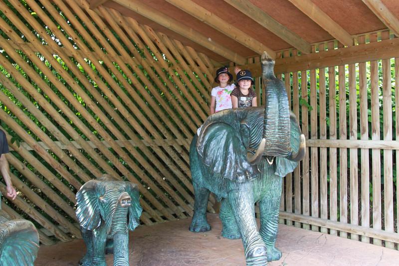 colchester zoo (78).jpg