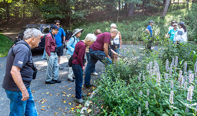 Beverly E Smith Memorial Butterfly Walk- August 24, 2019