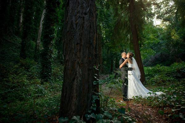 Harvey West Park - Santa Cruz