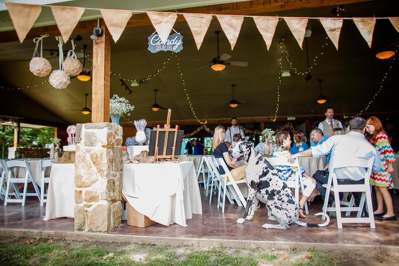 2014 09 14 Waddle Wedding - Reception-496.jpg