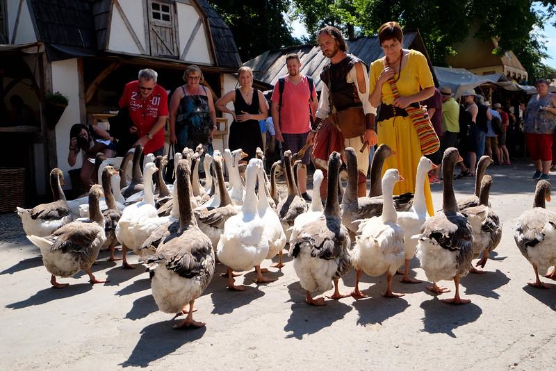Kaltenberg Medieval Tournament-160730-21.jpg