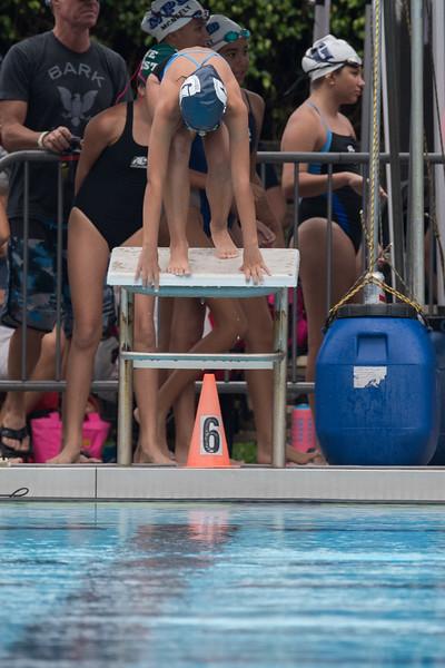 Fogel Swimming