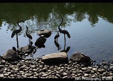 20150104 - Tsing Yi  Park