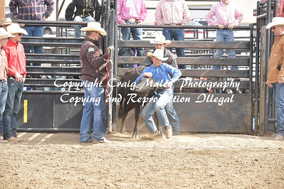 CHUTE DOGGING 2ND GO 5-20-2017