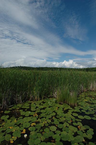 050705 7458 Canada - Midland - Wye Marsh with Brian _E _F _L ~E ~L.JPG
