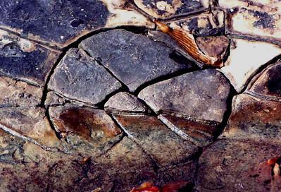 Gems & Minerals (Geology)