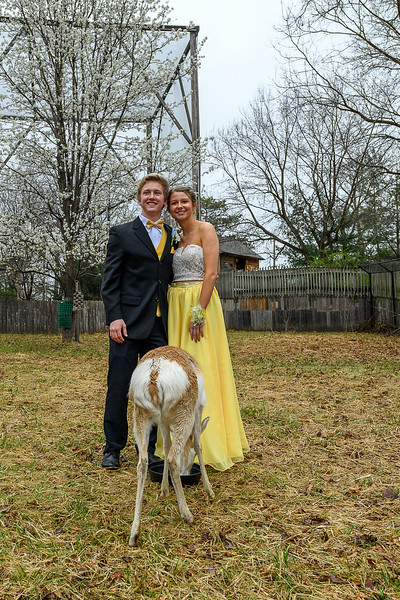 2018_KSMetz_April14_SHS PromNIKON D5_8188.jpg