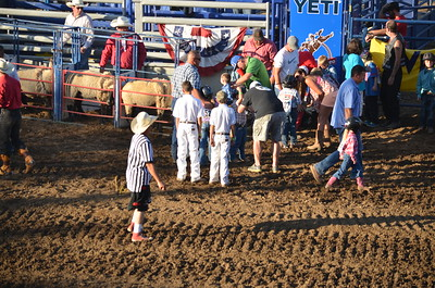 2016 Yuba Sutter Fair