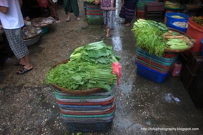 Wet market walk in Yangon - August 2010