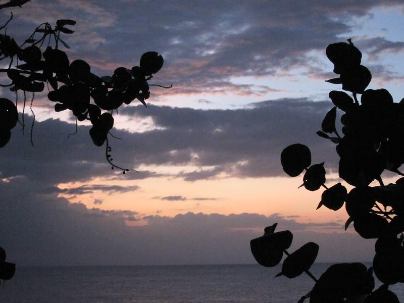 20120101-181249_BE7f_Canon PowerShot S95.jpg