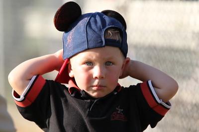 White Sox v Cardinals playoff 5-22-12