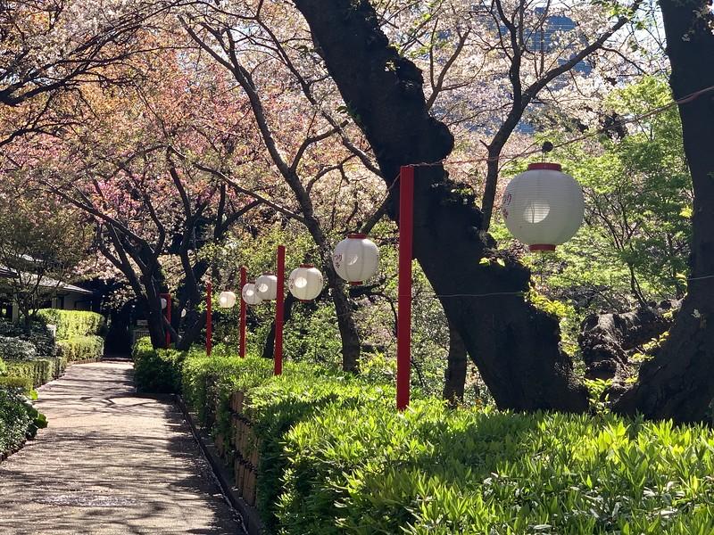 Photo, Prince Hotel gardens, Shinagawa, Tokyo
