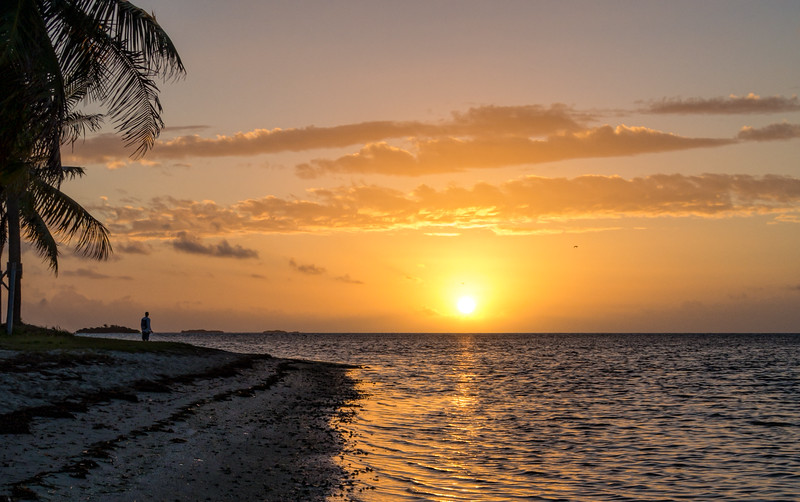 Sunrise, Florida Keys (45527)