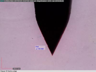Microscopy gallery