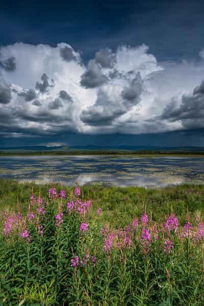 Yukon-Territories-canada-1.jpg