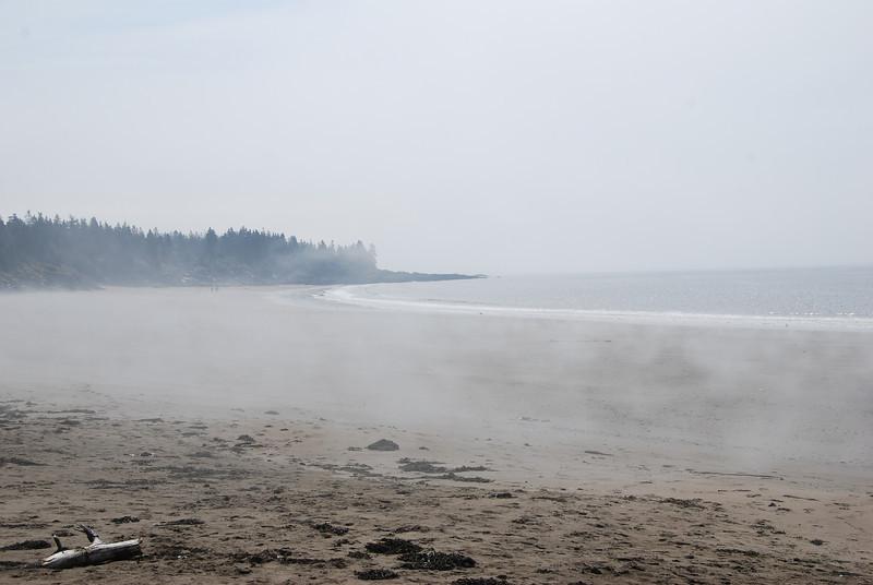 Seal Cove - 1