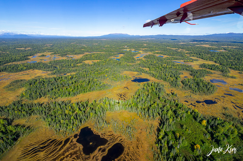 Rust's_Beluga Lake__DSC8787-2-Juno Kim.jpg
