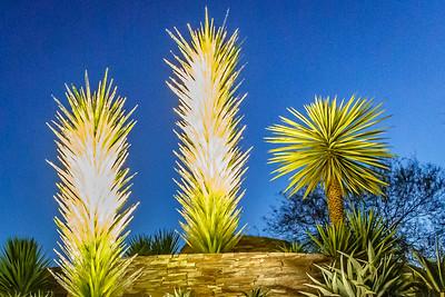 Grimes, Michael Electric Desert Botanical Garden