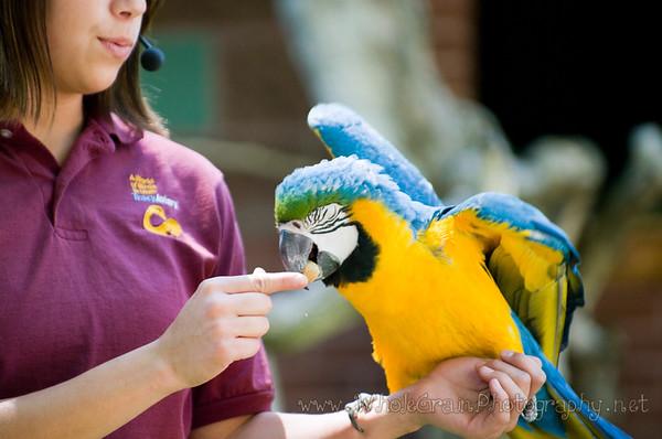 Tracy Aviary -- June 2009