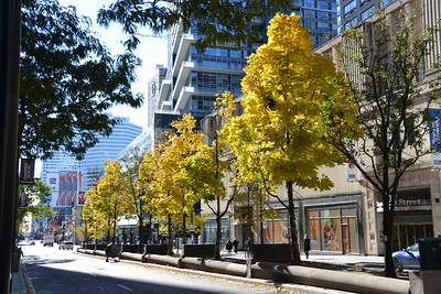 Autumn in Toronto, 2018