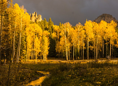 Ridgway Fall Color Workshop