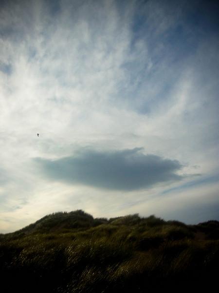 Ythan Dunes