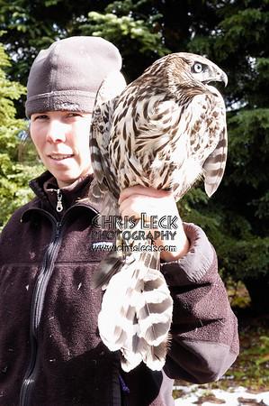 Bonney Butte Raptor Migration Project, Oct. 4, 2005