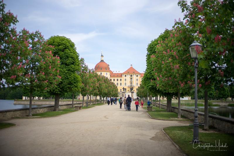 150526_Dresden_elbe_moritzburg_1166.jpg