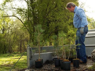 Arbor Day 2010