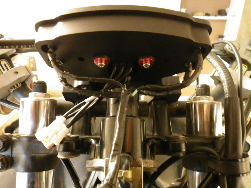 IMGP4479.JPG