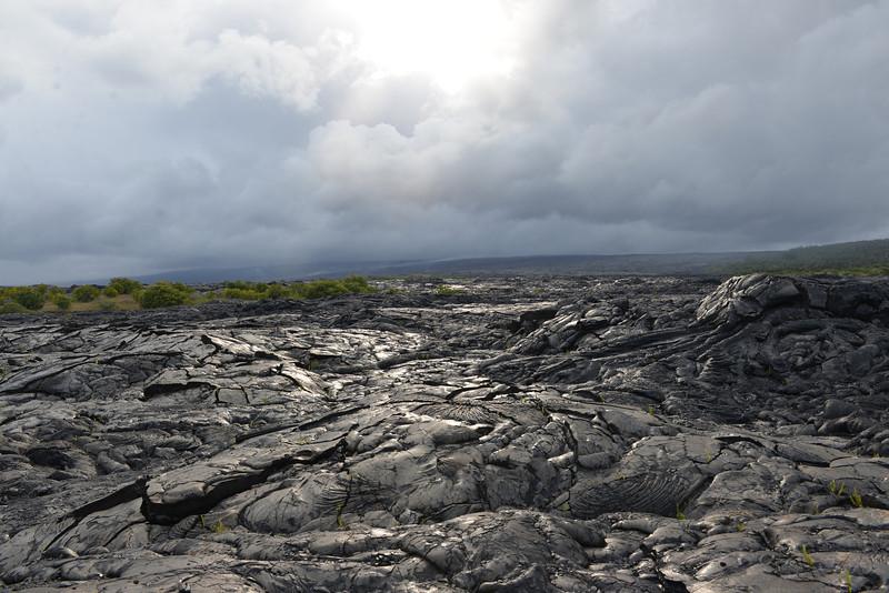 Big Island - Hawaii - May 2013 - 28.jpg