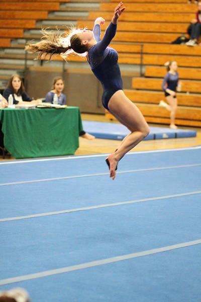 2014_03_27 Gymnastics LCC vs Westview Web 0045.JPG