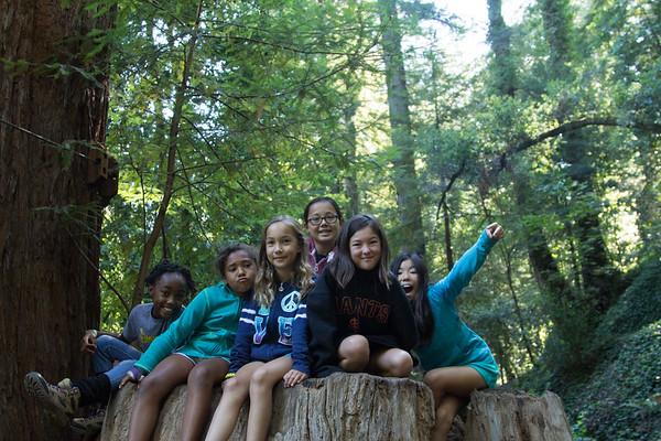 2015 Redwood Camp Week 5 - July 12–18