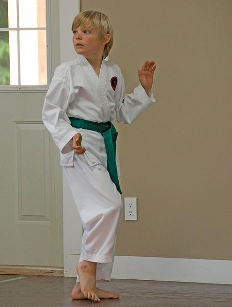 Nic(martial art)20100619A-6831A.jpg
