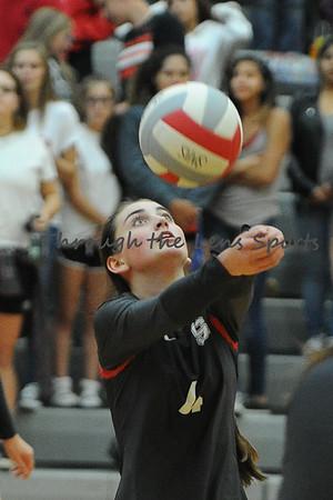 2016 Volleyball