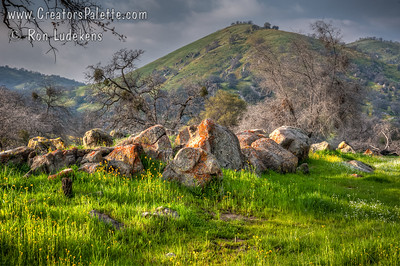 Homer Ranch Preserve - Tulare County, CA