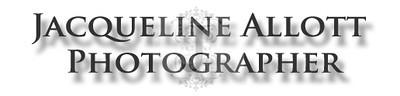 Website Logo 1.jpg