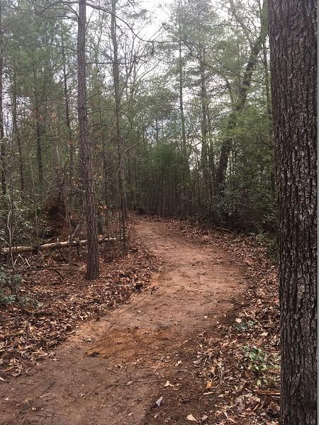 North Carolina: Mountains-to-Sea State