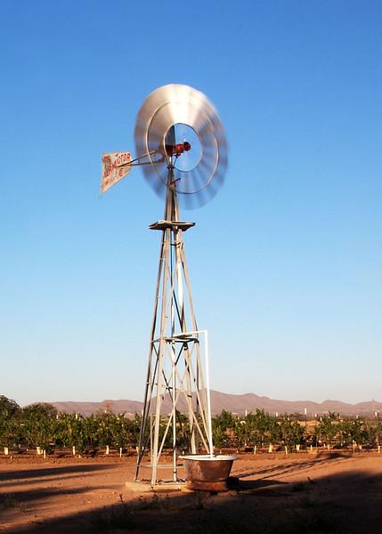 IMG_5612 windmill crp2.jpg