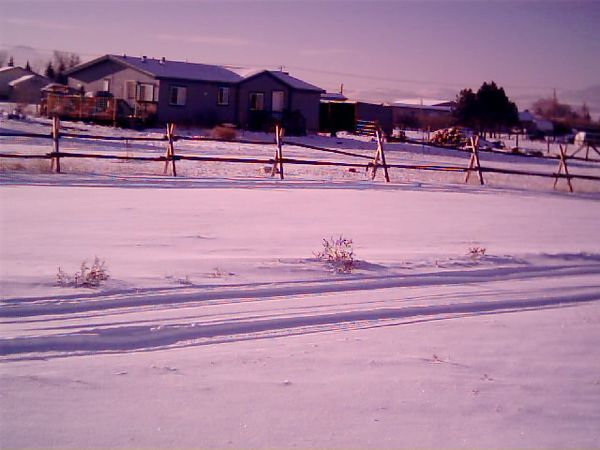 The view from the front porch, Jan. 11, 2005