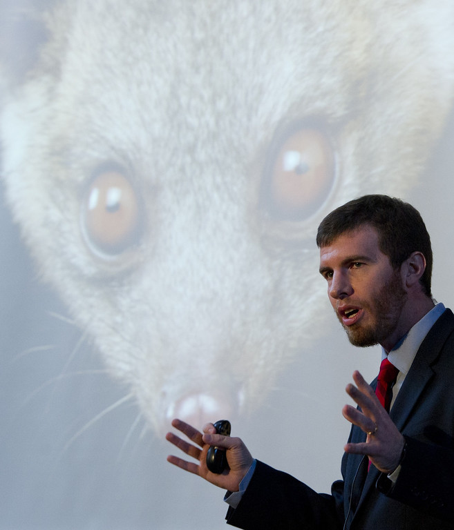 . Kristofer Helgen, curator of mammals at the Smithsonian\'s National Museum of Natural History, discusses the olinguito, the first carnivore animal species to be discovered in the American continents in 35 years, during a press conference announcing the discovery at the Smithsonian Institution in Washington, DC, August 15, 2013. AFP PHOTO / Saul LOEB/AFP/Getty Images